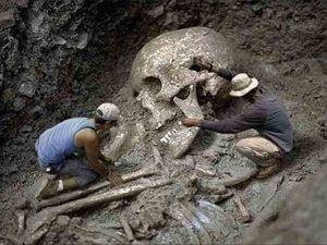 squelette de géant